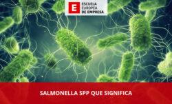 Salmonella spp que significa